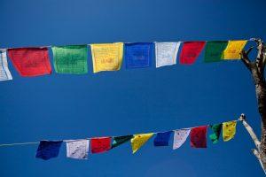 Gwynne Jones Yoga Prayer Flags 9